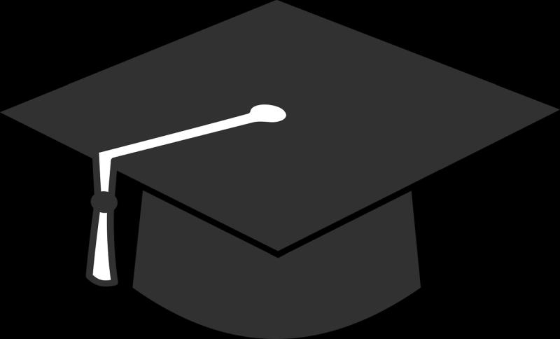 Lektoriranje diplomskih nalog DigitPen
